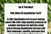 Q&A Tuesday / Answers to Questions We Get Frequently Here at Artificial Grass Liquidators