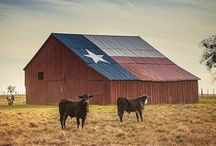 Photos - Texas / Photos of Texas.