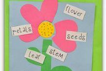 Science / Teaching