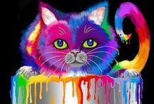 Colorful animal / by Britt Julsgaard