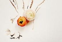 Rabbit Design / by dollis.co