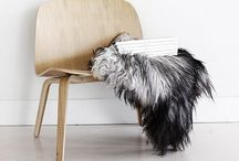 ARCH | Furniture / Mobiliario | Furniture | Inspiration