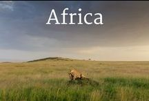 Africa and Safaris / Take your kids to Africa! Posts here are from our travels around Africa and the best from other travelers to Africa. Read more at http://www.travelbabbo.com
