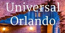 Universal Orlando / Universal Orlando is my favorite amusement park! That's why I've traveled with my kids four times in the past few years. In this board I share tips, secrets and recommendations on hotels, food and rides to help you plan your family vacation to Universal Orlando. Read more at http://www.travelbabbo.com