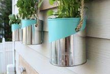 Plantas em latas / Plantas, DIY, Reciclagem, Latas, Horta em casa, Inspiração.