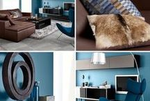 BROWN and BLUE HOME / ROOM