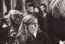 Harry Potter/fantastic beast