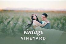 Vintage Vineyard