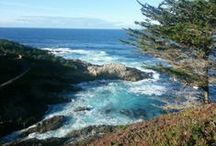 Our Favorite Places in Monterey / by Middlebury Institute