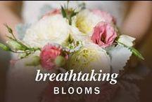 Breathtaking Blooms