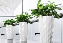 Contemporary Planters / Needs some beautiful plant containers for an upcoming job? Take a look at a small sampling of our product.