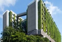 Green Living Walls / A board dedicated to vertical garden designs showcasing living green walls and more.