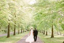 Wedding: Couple Portrait