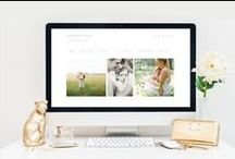 Wordpress Themes by Dinosaur Stew / Wordpress themes for photographers, creative entrepreneurs, and smart bloggers! All Dinosaur Stew themes are built on the Genesis framework.
