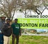Dallas-Fort Worth News / What's happening in Dallas-Fort Worth neighborhoods?