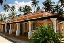 Mandrem Villas / Stunning villas where the only sounds are wind, ocean and birds.