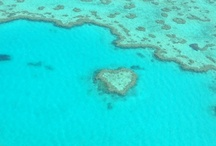 Whitsunday's 2012 / Easter 2012 - Croc spotting, Crabbing, Snorkelling and Sight seeing - Beautiful