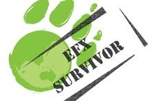 EFX Survivor / Survivor information for all the countries you travel!