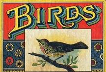 Birds~Art & Things / by Boo Jay