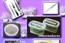 plants in vitro culture