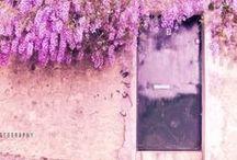 Idea: Lilac and Wood Tones