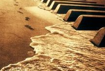 ✒ Music...