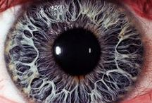 Eyes / Beautiful Close Up Shots Of Eyes!