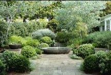 wassergarten..........................