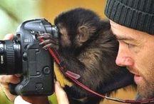 Photography & photographers