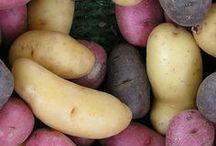 Gardening: Potatoes