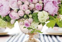 Flowers / A collection of floral arrangements