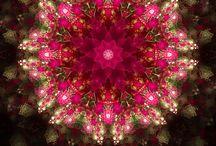 Mandalas / Art
