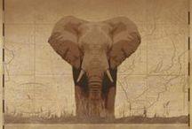 Safari Ambiance