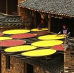 China / Ecotourism is growing in China. The UPI's Stephen Shaver filed a collection of beautiful photos from east China's Jiangxi Province and other locations. MORE PHOTOS: upi.com/3179961