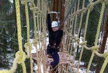 Tapiotar: Yläradat − sininen / Top course − blue / Huipun sininen ylärata sai nimekseen Tapiotar. Tapiotar oli muinaissuomalaisille lintujen kantaäiti ja suojelija. Rata koettelee jo hiukan käsivoimia. Sillä taiteilu lämmittää mukavasti yläselkää. Leppoisa rata kuuden metrin korkeudessa kehittää tasapainoa.  Adventure on the blue tree top course demands already a bit muscle strength. Balancing on the bridges and nets 6 meter's above ground helps develop balance control.