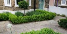 East London Front garden design / The garden was partly paved with standstone paving and we added planting to the front and back to add colour and interest. Lavender and bay was planted towards the window which would add fragrance with the windows were open during the summer.