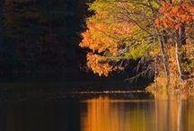 Der Herbst, der Herbst, der Herbst ist da...  / Viele Dekorations-Ideen und Essen rund um den Herbst..