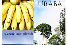 Uraba - the hidden caribbean coast of Colombia / We invite you to a unique Colombian experience. Enjoy the combination of Caribbean beaches, awesome tropical nature, stunning landscapes, cultural treasures and unforgettable Colombian moments..