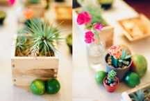 Love Everything Mexican  / by Lori Willis