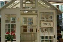 Greenhouses & Potting Sheds / Greenhouses