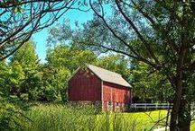 ranch & farm