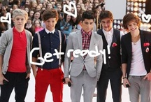 Les One Direction (1D)