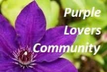 Purple Lovers Community / I love Purple. It also happens to be the contrasting colour to my olive eyes.  Join me in a tribute to all things Purple, in all its varying shades. #colourpurple