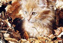 Sueelen  Ross / Magnifiques Tableaux de chat