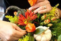 floristry_base