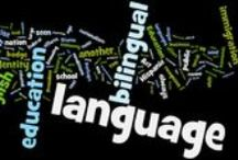 Bilingual Education Articles / Read interesting articles to help you on your learning language journey with your kiddos!