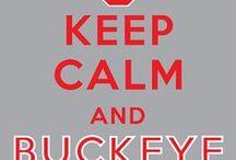 I ♡ Football! GO BUCKS!! / by Lema Wright