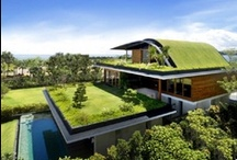 "green life / Green technology and renewable energy ""for the sustainable world""."