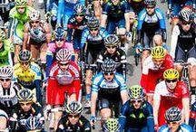 Ciclismo en estado puro