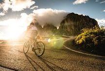 Roadies / Road biking at it's finest.  Ride hard, go fast.